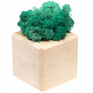 Декоративная композиция GreenBox Wooden Cube, бирюзовый